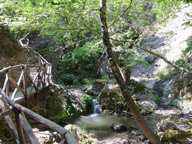 14-dolina-leptirova.jpg.jpg